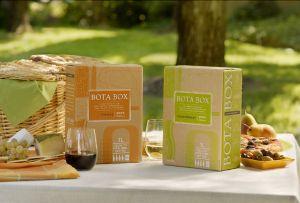 bota-box-picnic