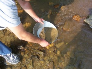 Gold_panning_at_Bonanza_Creek