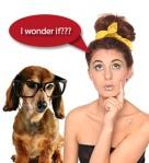 wonder if