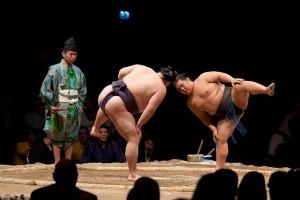 Sumo Wrestler diet
