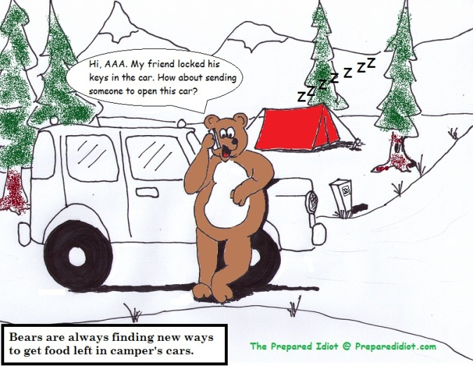 Sneaky Bears the prepared idiot